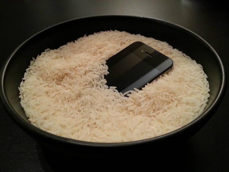 no arroz